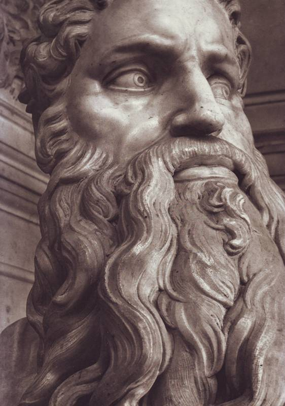 Moses - Michelangelo head