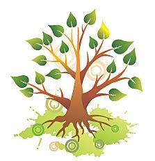 Hazak Tu B'Shevat Tree