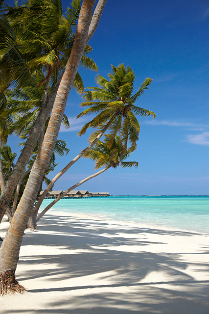 Main Beach, Shangri-La Villingili Resort & Spa, Maldives