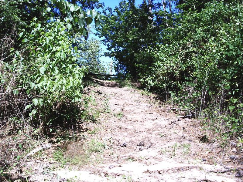 step site