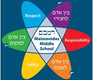 MS logo, medium size