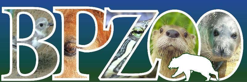What's Happening at BPZOO