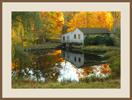 AutumnMill