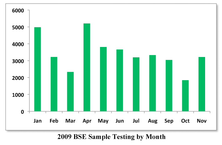 2009 BSE Sample Testing by Month