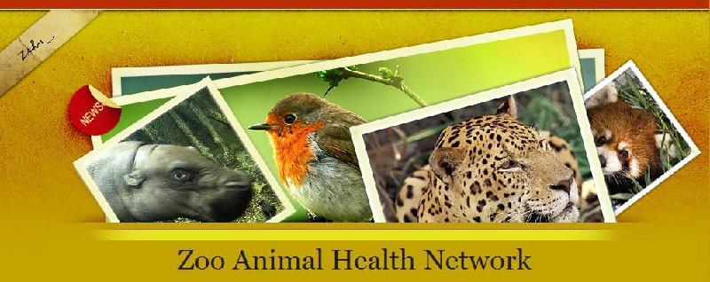 Zoo Animal Health Network