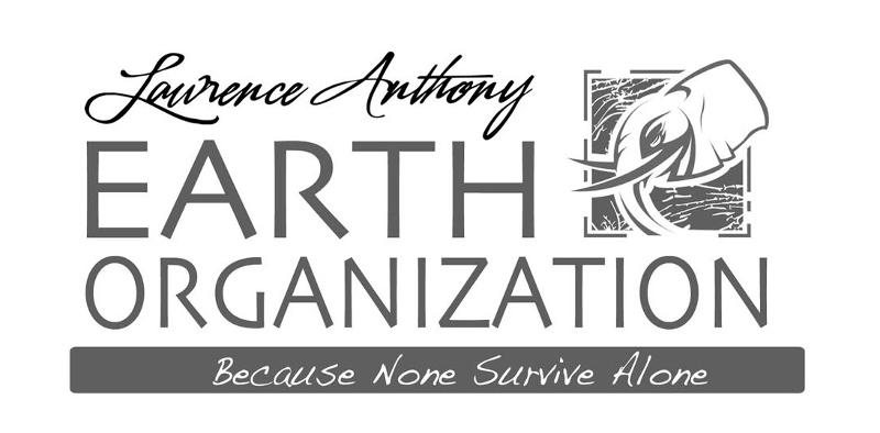 The Earth Organization's Year in Review!