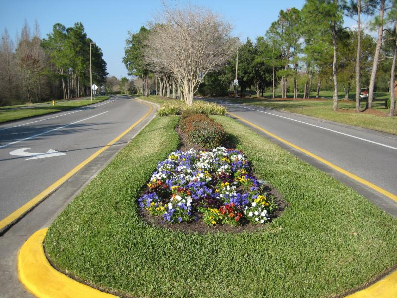 This beautifully landscaped median is a county road but maintained by the community