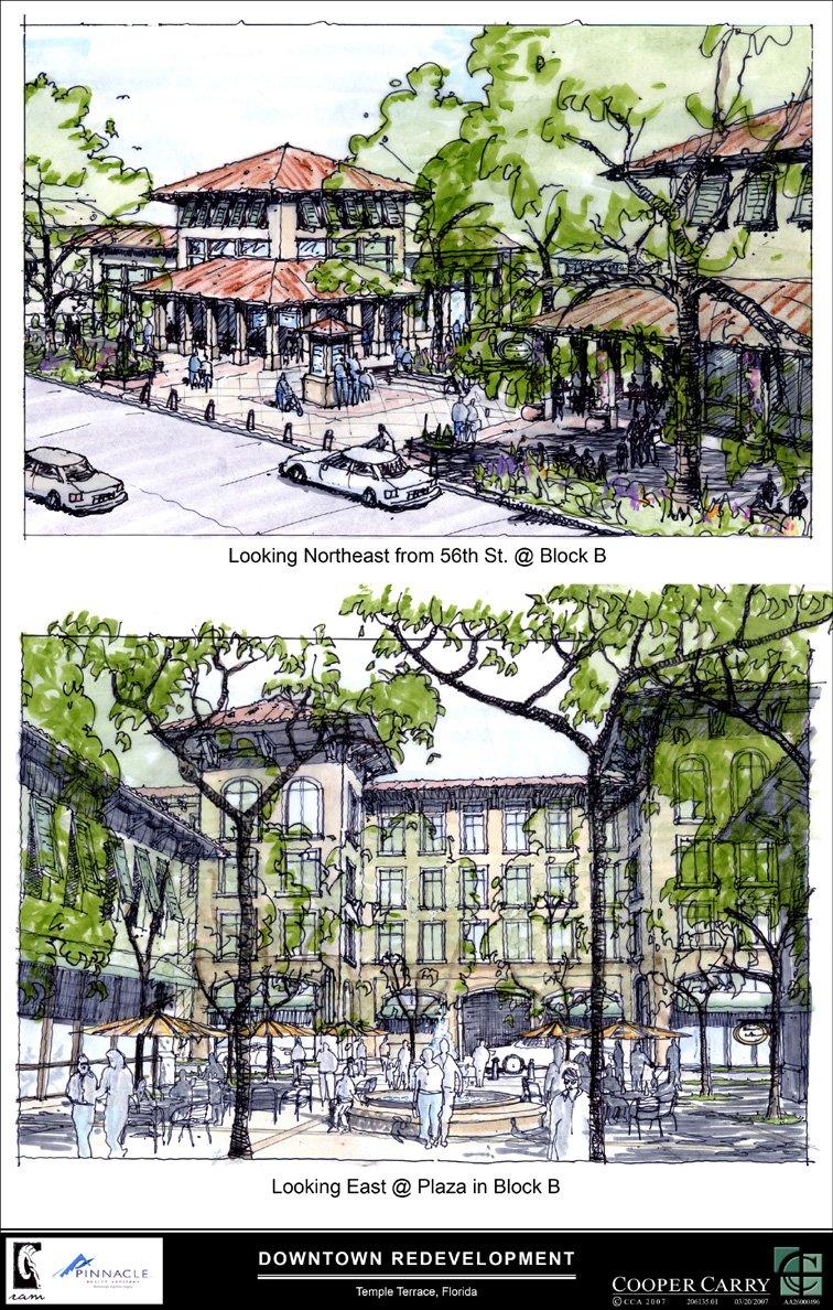 Temple Terrace Multimodal Transportation District & Design Guidelines