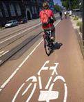 Bike rider in bike lane