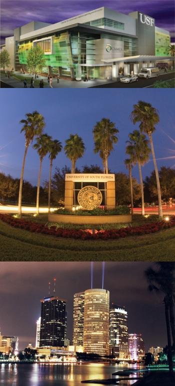 CAMLS / USF / Downtown Tampa