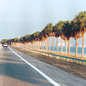 Courtney Campbell Causeway Trail