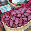 Red Potatoes 100px