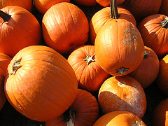 pumpkins_DrBacchus