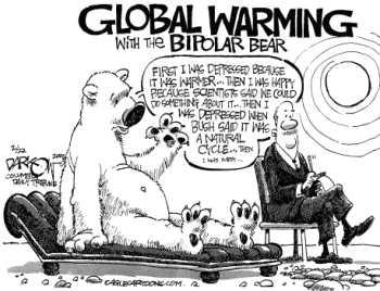 Bi Polar Bear