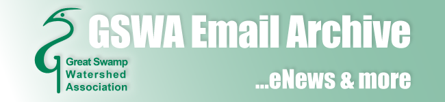 GSWA Email Archive - eNews and more