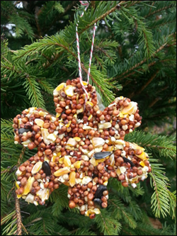 Living Ornament in the shape of a star, from Back To Nature Home and Garden