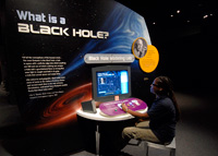 Black Holes exhibit