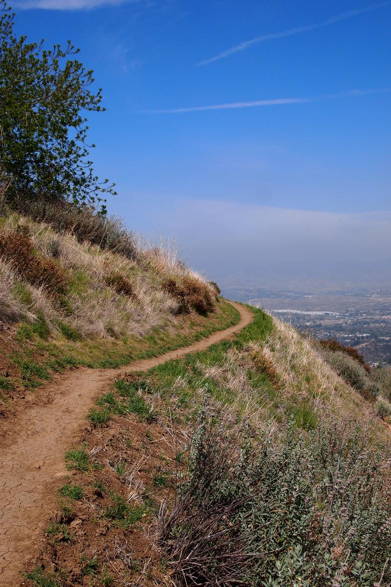 Trail in Santa Clarita Woodlands