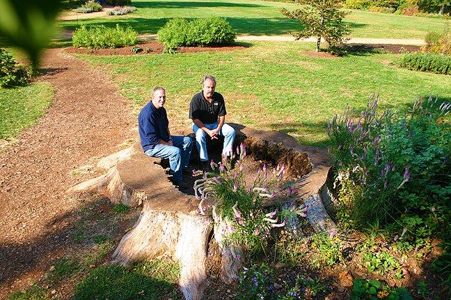 sitting in stump