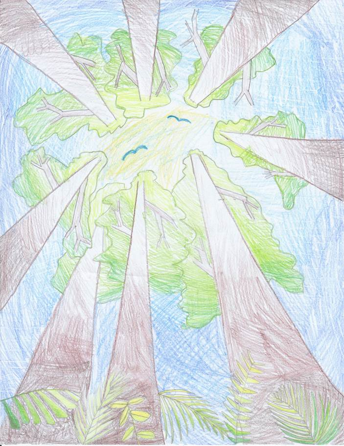 ABigail Cheng Arbor Day drawing