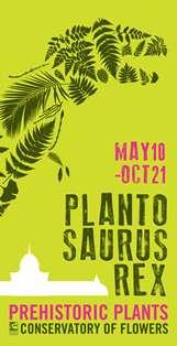 Plantosaurus Rex