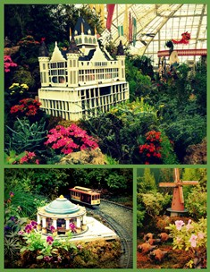Playland in Bloom collage