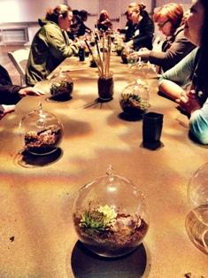 Succulent Workshoppers