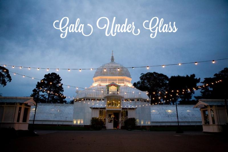 Gala Under Glass image