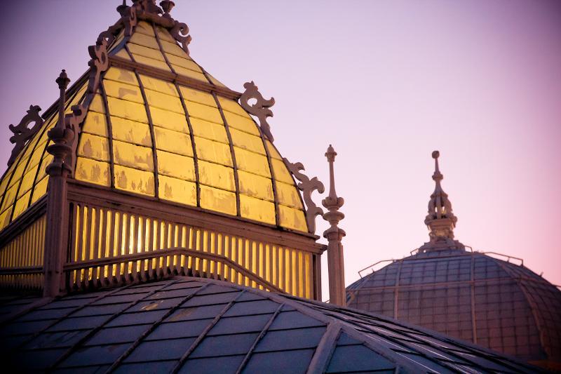 COF Dome