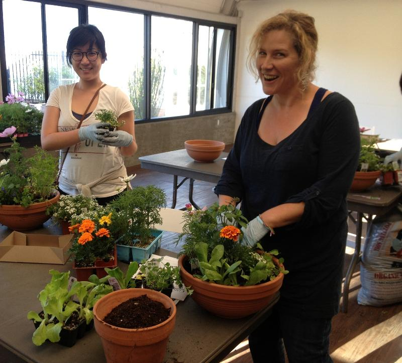 Sloat Edible Container workshop