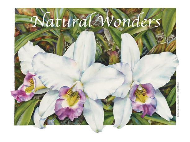Natural Wonders Poster