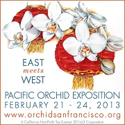 Pacific Orchid Expo 2013