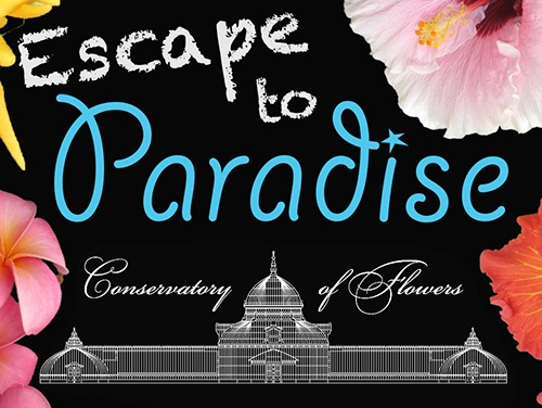 Escape to Paradise, June 12 at the COF