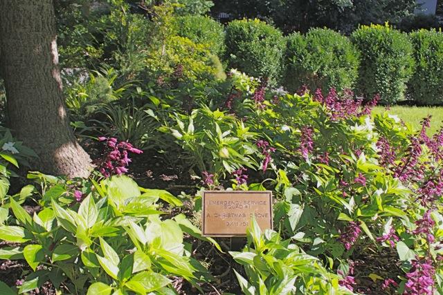 ESU WTC Garden