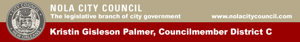 Councilmember Palmer Council Banner