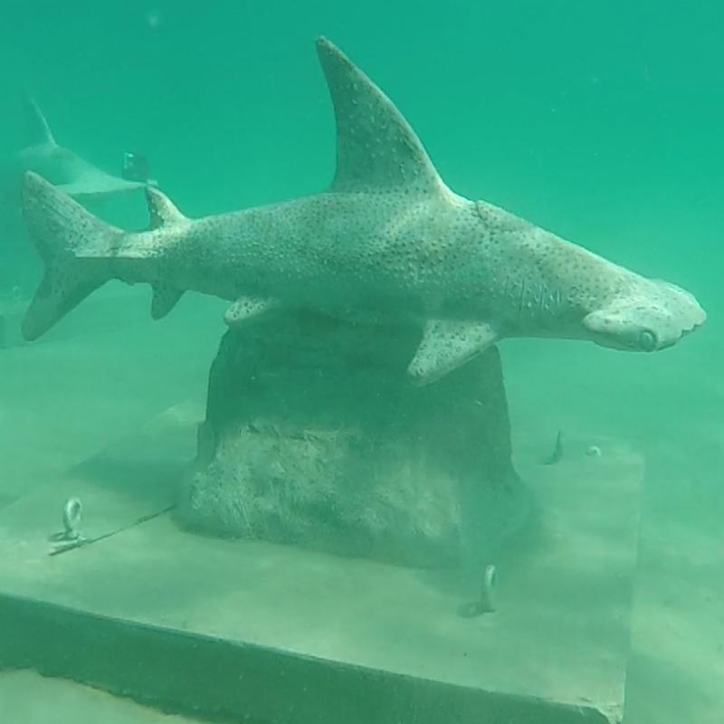 Shark Sculpture Underwater