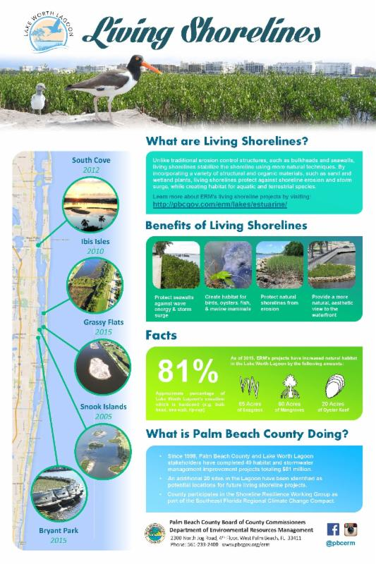 Living shorelines poster