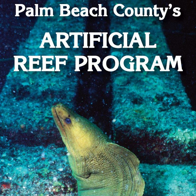 Artificial Reef Brochure