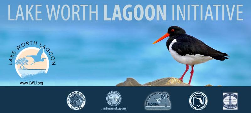 LWLI Banner with Logos