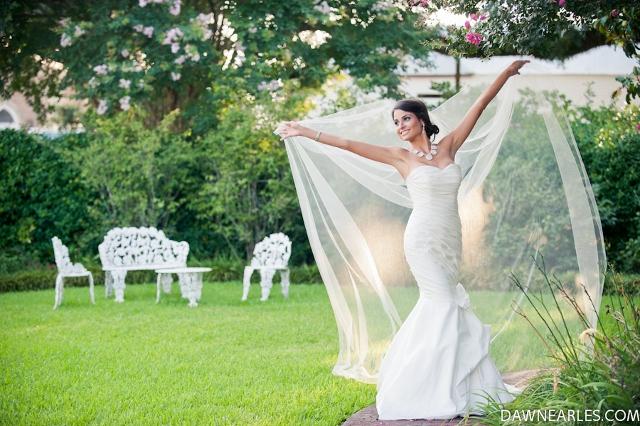Bride with Veil DE