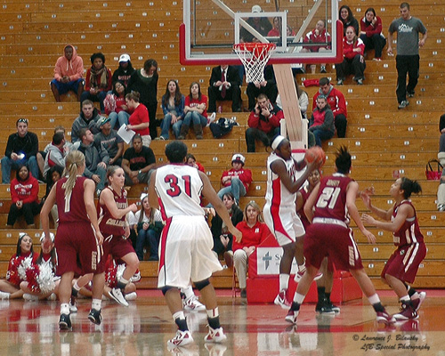 U of Hartford Women's basketball - Go Hawks!