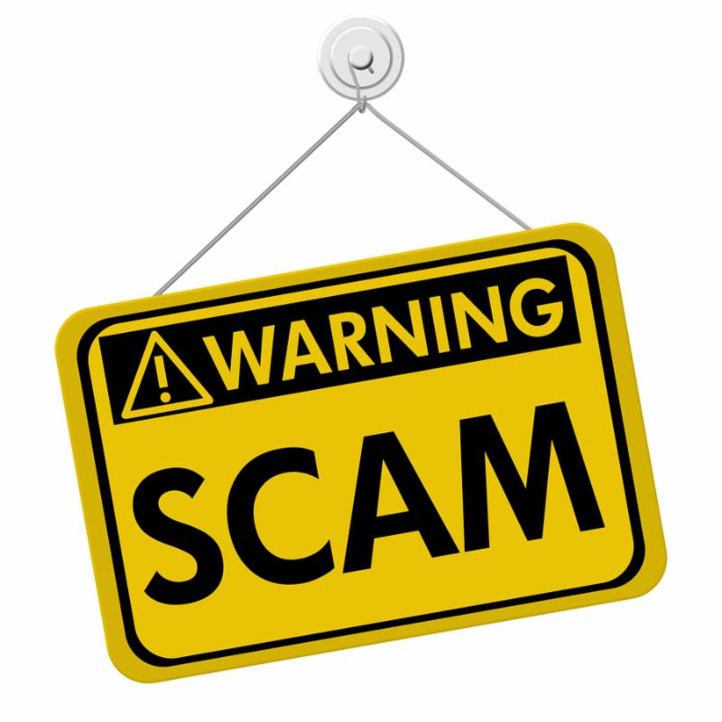 A yellow and black sign with the word Scam isolated on a white background Warning of Scam
