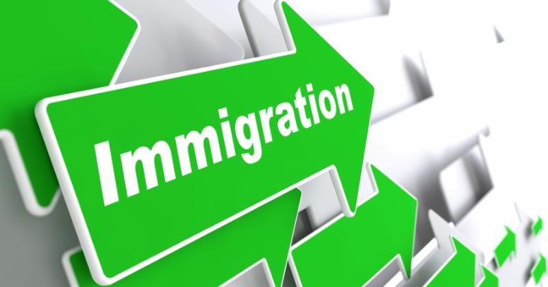 Immigration - Social Background. Green Arrow with  Immigration  Slogan on a Grey Background. 3D...