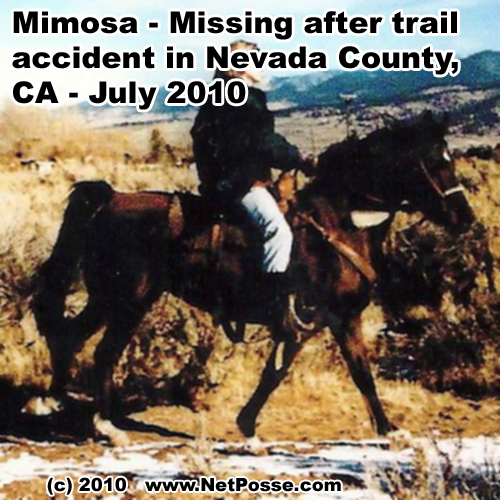 NetPosse.com - Mimosa - Missing in CA - July 2010