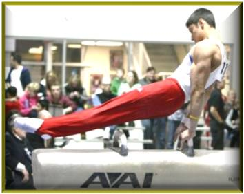 woga classic gymnastics meet 2013 nissan
