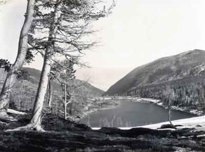 KD Swan-Carlton Lake
