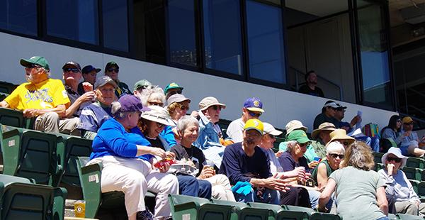 OLLI group at baseball game