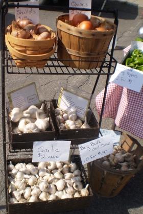 Marsh Meadow Farm - garlics