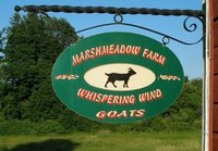 Marsh Meadow Farm