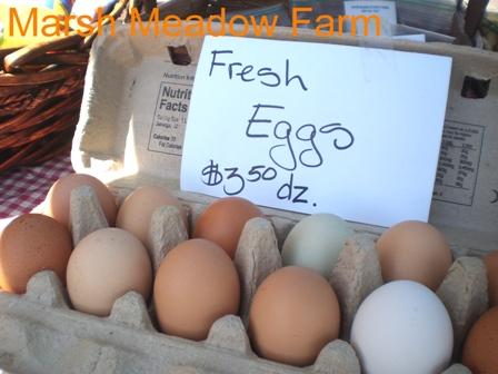 Eggs - Marsh Meadow Farm